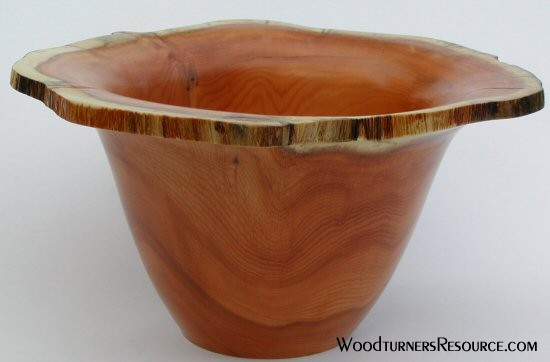 pacific yew natural edge