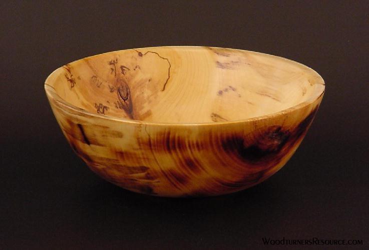 Braised Poplar Bowl 5170