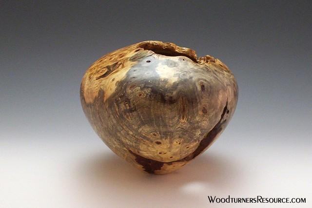 Buckeye Burl Hollow Form