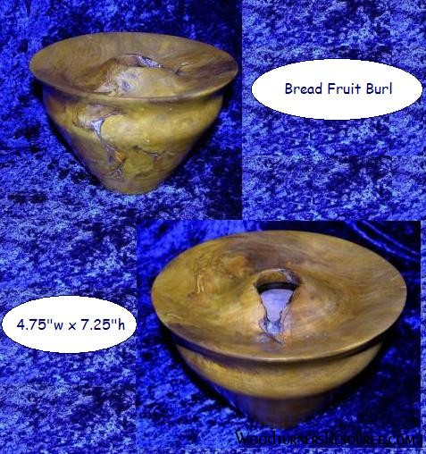 Bread Fruit Burl