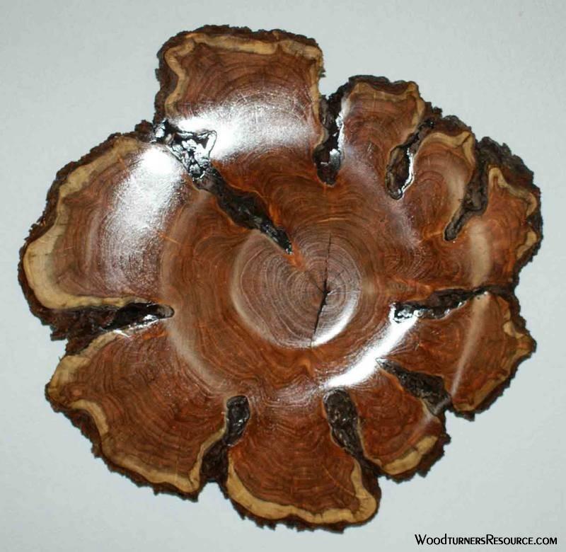 Mesquite Blossom