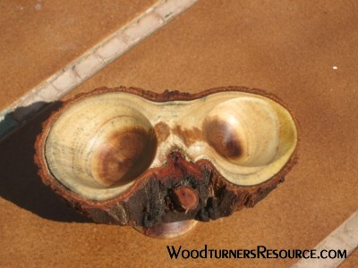 Pepperwood Owl